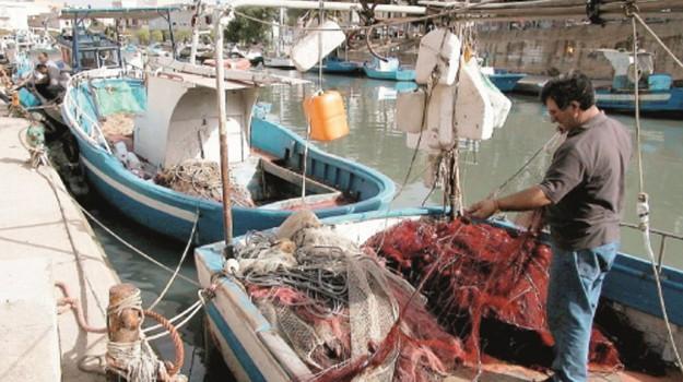 flotta peschereccia, Mazara del Vallo, Trapani, Economia