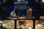 Il presepe per i terremotati di Amatrice allestito a Palermo - Video