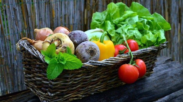 studio, verdure cotte, Sicilia, Società