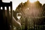 Parola alle donne: per oltre il 50%, l'uomo che non ama il vino è noioso