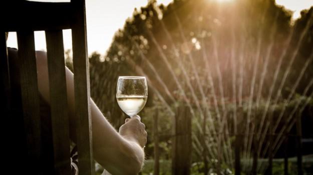 rivista usa, Vino, vino siciliano, Sicilia, Cronache dell'agricoltura, Economia