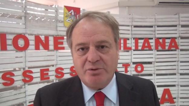sanità, Antonello Cracolici, Palermo, Politica