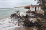 Maltempo nella zona di Eraclea, le mareggiate abbattono 10 alberi