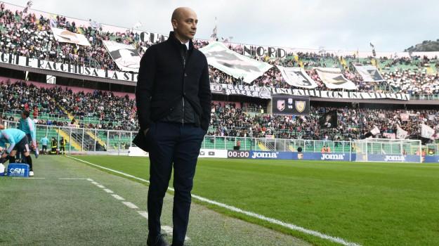 chievo, Palermo, Renzo Barbera, sassuolo, stadio, Eugenio Corini, Palermo, Calcio