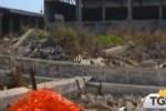 Amianto, aumenta l'abbandono a Palermo