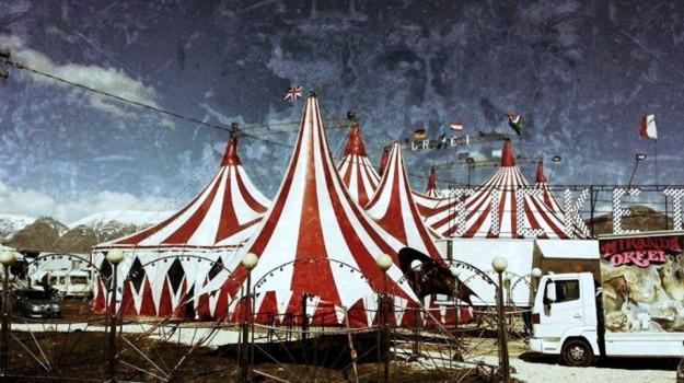 circo, lavoro irregolare, Siracusa, Cronaca