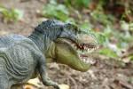 I dinosauri? Animali pazienti: da 3 a 6 mesi per covare le uova