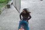 Con la bimba nel passeggino, donna viene travolta da un cornicione