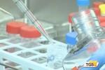 Lotta contro il cancro: identificato kit di geni, chiave per futuri farmaci