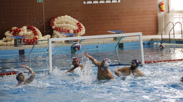 pallanuoto, telimar, telimar-civitavecchia, Palermo, Sport