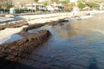 La spiaggia di Mondello invasa dalle alghe e sulla Costa Sud al via il piano di manutenzione