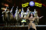 Dopo 146 anni cala il sipario sul circo Barnum: esultano gli animalisti