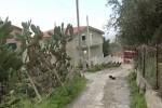 L'arresto del boss Vitale, si nascondeva in una villa nel Palermitano - Video