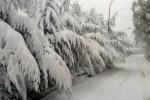 Maltempo, la Sicilia sotto la neve: strade bloccate, trasporti in tilt - Tutte le immagini