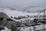 Neve e gelo nel Catanese, danni ai vivai di Randazzo - Foto