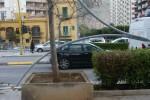 Vento a Palermo, caduti due pali dell'illuminazione - Foto