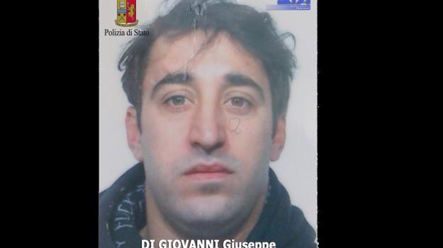 Alcamo, armi, droga, freezer, mafia, Giuseppe Di Giovanni, Trapani, Cronaca, Mafia e Mafie