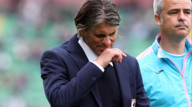 allenatore, Calcio, Palermo, SERIE A, Palermo, Qui Palermo