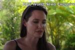 """Angelina Jolie parla di Brad Pitt e si commuove: """"Saremo sempre una famiglia"""""""