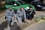 Palermo, blitz a Ballarò: liberati 300 cardellini - Foto