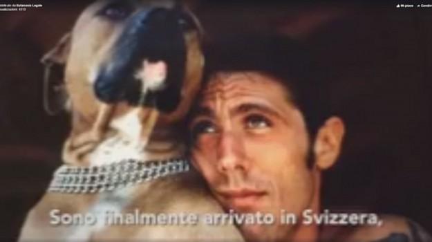 eutanasia, eutanasia svizzera, Dj Fabo, Sicilia, Cronaca