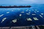 Bam, un'installazione in acqua racconta la Sicilia che accoglie chi viene dal mare - Video