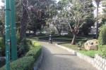 Palermo, riparato l'impianto di irrigazione al Giardino Inglese - Video