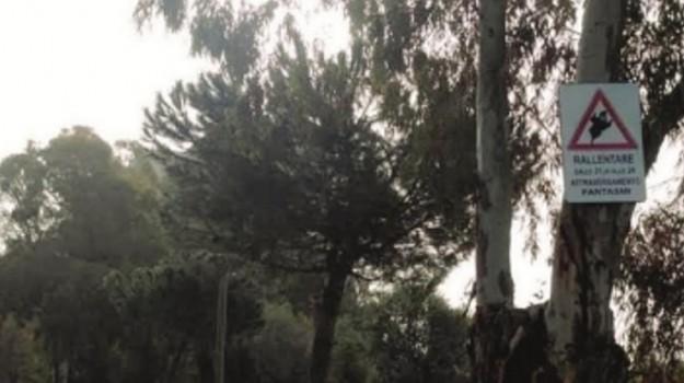 cartello, fantasma, mussomeli, Caltanissetta, Cronaca