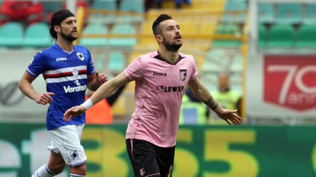 Calcio, Palermo, salvezza, samp, SERIE A, Palermo, Calcio