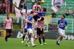 Palermo beffato al 90', con la Sampdoria persi punti d'oro: rivedi la partita