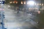 Palme bruciate a Milano: i vandali ripresi dalle telecamere