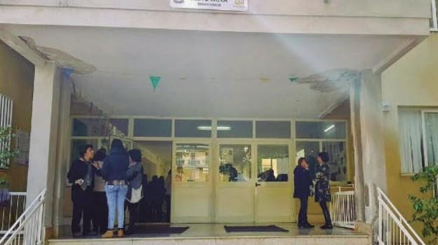 scuola, termini imerese, topi a scuola, Palermo, Cronaca