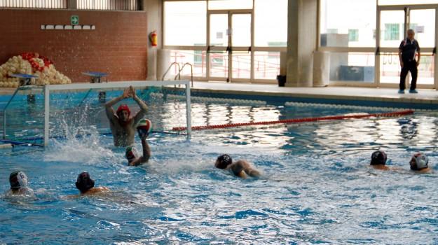 nuoto catania, pallanuoto maschile, telimar, Palermo, Sport