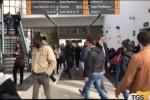 Nuova offerta formativa all'università di Palermo: sono 125 i corsi