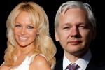 """Pamela Anderson e quel debole per Assange, l'ex bagnina: """"E' sexy"""""""