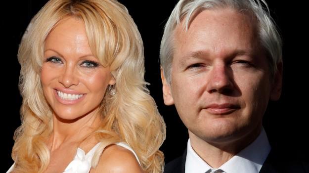 ambasciata, amore, Julian Assange, Pamela Anderson, Sicilia, Società