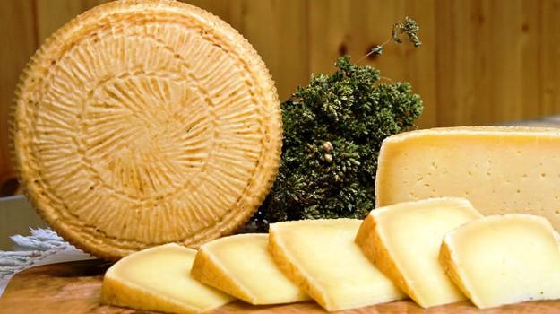 formaggi, latticini, Sicilia, Cronache della Salute, Vita