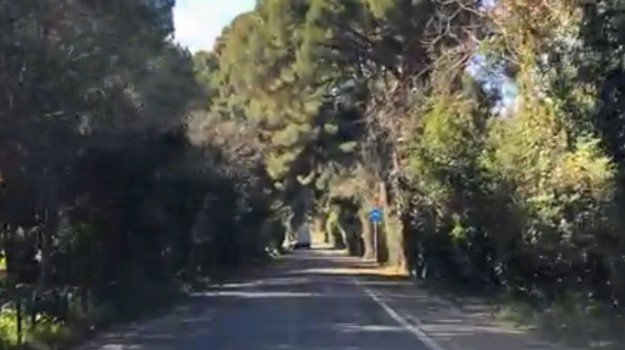 incidente, Moto, Palermo, Cronaca