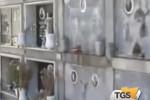 Cimitero di Trapani, 50 salme in attesa di sepoltura