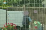 Dipendenti pubblici assenteisti in Sicilia, coinvolti 260 lavoratori