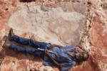 In Australia scoperta l'orma di dinosauro più grande della storia: lunga 1,75 metri