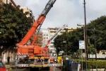 Forti raffiche di vento a Palermo, pali divelti e alberi pericolanti: vigili del fuoco in azione