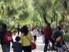 """Da """"La Via dei Librai"""" alla Favorita a piedi, weekend di eventi a Palermo: come cambia la viabilità"""