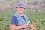 Maria Mura