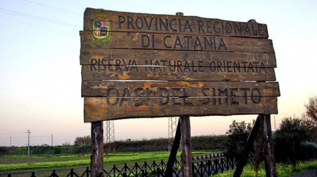 rifiuti, simeto, Catania, Cronaca