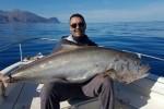 Sorpresa a Castellammare, pescata una ricciola di 50 chili - Le immagini