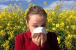 No ai finestrini aperti, sì allo shampoo frequente: come gestire le allergie