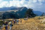 Escursioni, degustazioni e sport: a Cefalù torna la giornata della Terra
