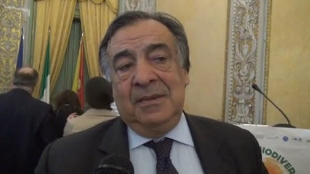regionali in sicilia, Fabrizio Micari, Leoluca Orlano, Sicilia, Politica
