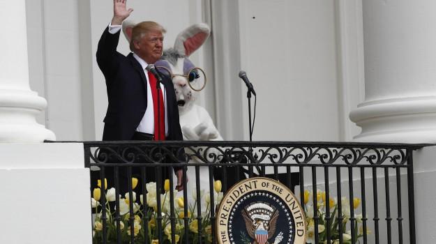 casa bianca, Festa della repubblica, USA, Donald Trump, Sicilia, Mondo